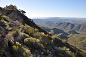 St Mary's Peak, Flinders Ranges National Park, image provided by DENR